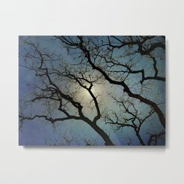 Oak Tree at Dusk Metal Print