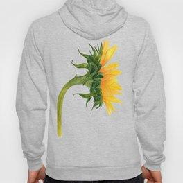 Sunflower Watercolor 03 Hoody