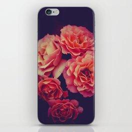 Treasure of Nature III iPhone Skin