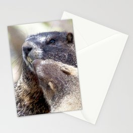 Watercolor Marmot 01, Forest Canyon Tundra, RMNP, Colorado, Look at those Pearly Whites! Stationery Cards