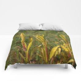 Divergent Grass Comforters