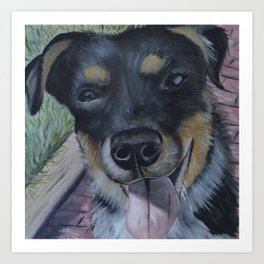Cattle Dog Pup Art Print
