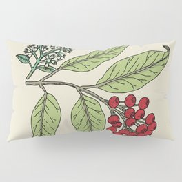 Plant Illustration Print Lilly Pilly Pillow Sham