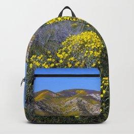 Carrizo Plain National Monument California Backpack