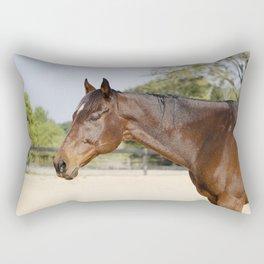 Gulliver Rectangular Pillow