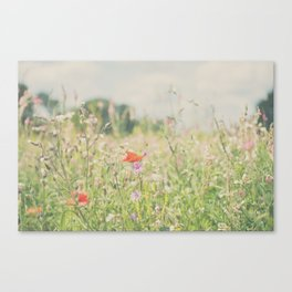 wild flowers ... Canvas Print
