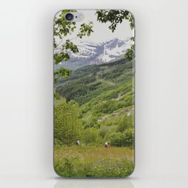 norway iPhone Skin