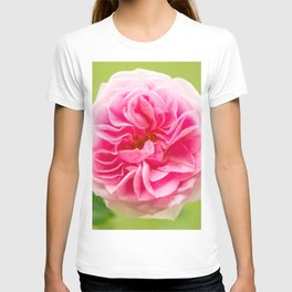 Pink Rose On A Natural Green Background #decor #society6 #buyart T-shirt