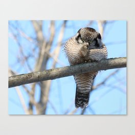 POW Right In The Kisser Canvas Print