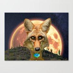 Arizona GQ Coyote Canvas Print