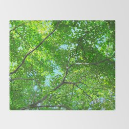 Canopy of Green, Leafy Branches with Blue Sky Throw Blanket
