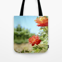 Roses in Santa Ynez California Vineyard Tote Bag