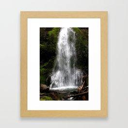 Nature's Shower Framed Art Print