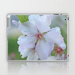 Almond tree flower blooming Laptop & iPad Skin