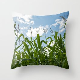 Corn Field 24 Throw Pillow