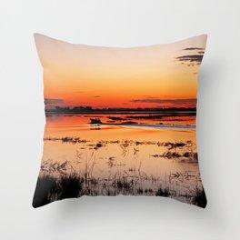 Evening in Africa Throw Pillow