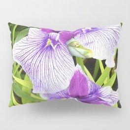 Two Pillow Sham