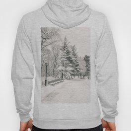 New York City Winter Trees in Snow Hoody