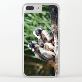 Cotton-top Tamarin Clear iPhone Case