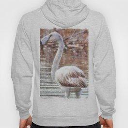 Flamingo Feathers Watercolor Hoody