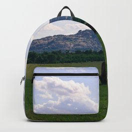 The Wichitas Backpack