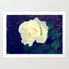 Secret Garden | Pure White Art Print