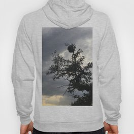 Stormy Mood Photography Hoody