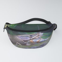 The crayfish Fanny Pack