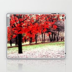 First Snowfall Laptop & iPad Skin