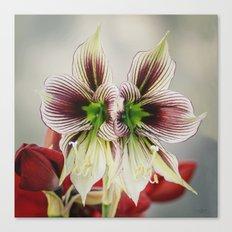Twin Lilies Canvas Print