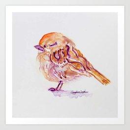 Little Purple Brown Sparrow watercolor by CheyAnne Sexton Art Print