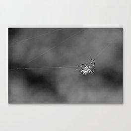 Dancer in the Dark Canvas Print