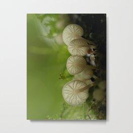 Mushroom Gills... Metal Print