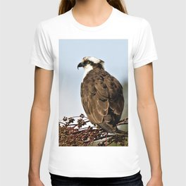 Magnificent Osprey Raptor by Reay of Light T-shirt