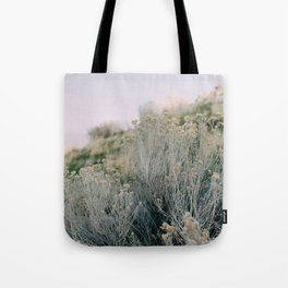 Desert Blush Tote Bag
