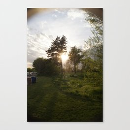 The Spot Canvas Print