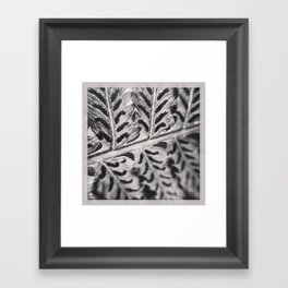 Black and White image of the back of a fern leaf Framed Art Print