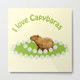 I love Capybaras Metal Print