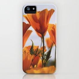 Golden Poppies In The Breeze iPhone Case