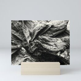Sequoia Abstract, No. 1 bw Mini Art Print