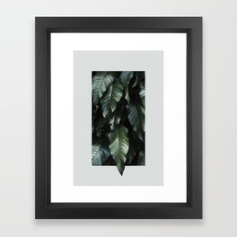 Growth II Framed Art Print