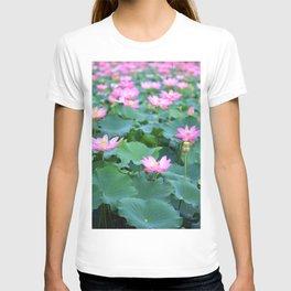 Pink Lotus flowers in lake T-shirt
