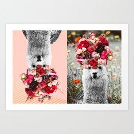 Llama Llama Bouquets Art Print