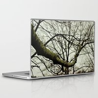 moss Laptop & iPad Skins featuring Moss by Riley Gallagher