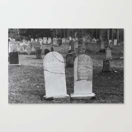 Reconstructed Canvas Print