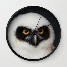 Owl_20180210_by_JAMFoto Wall Clock