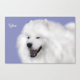 Tybor; Samoyed Portrait Canvas Print