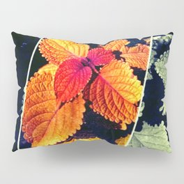 Singled Out Pillow Sham