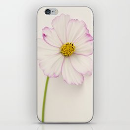 Sensation Cosmos Single Bloom iPhone Skin