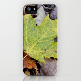 Alive Amongst the Dead iPhone Case